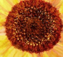 Sunflower'... Sticker