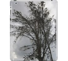 Tree branches iPad Case/Skin