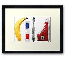 Allons-y my friend! Framed Print