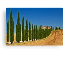 Road To Tuscany Canvas Print