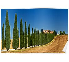 Road To Tuscany Poster