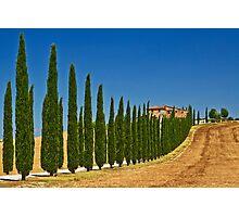 Road To Tuscany Photographic Print