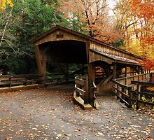 Lantermans Mill Bridge In Fall by Tony  Bazidlo