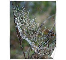 cobweb Poster