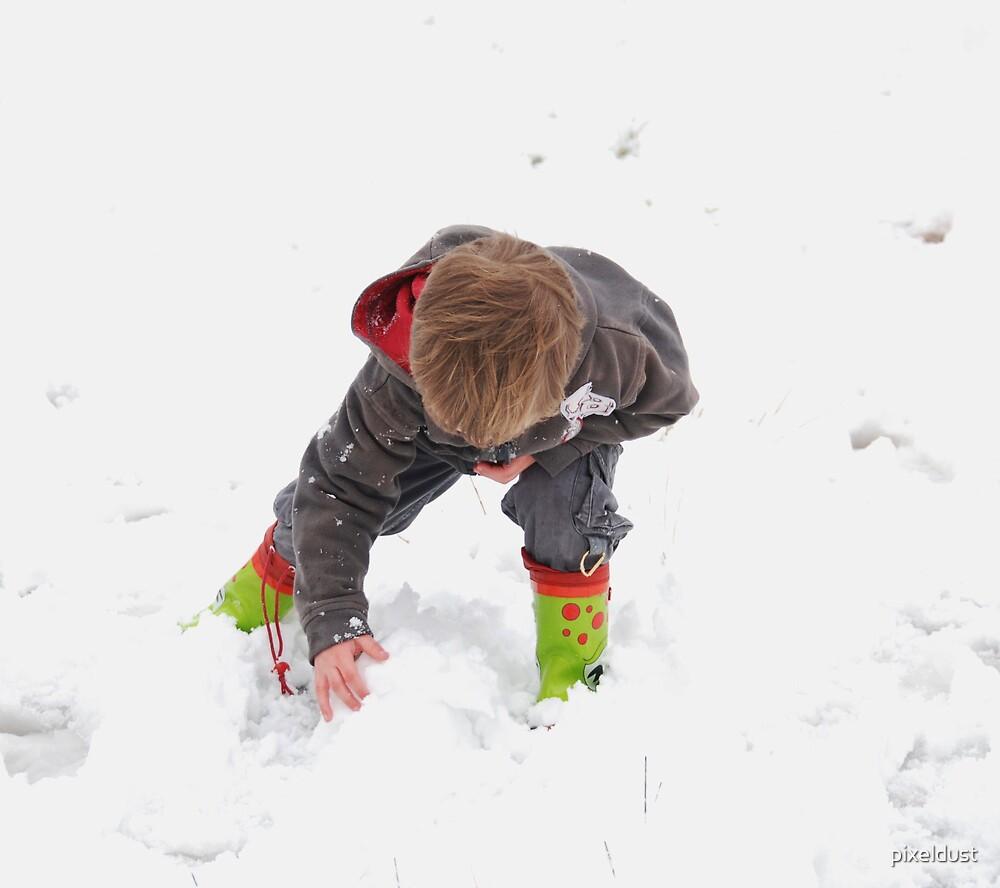 fun in the snow  by pixeldust