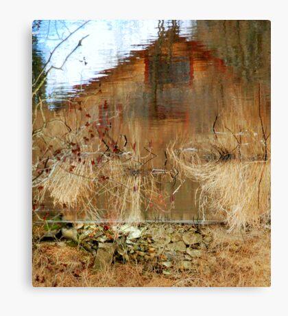 Perception... Canvas Print