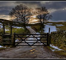 Icy path at sunset by Shaun Whiteman