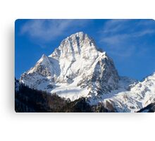 Winter Glory Canvas Print