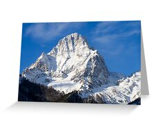 Winter Glory Greeting Card