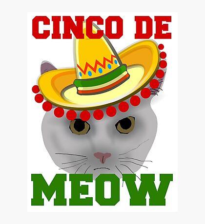 Cinco De Meow Photographic Print