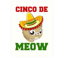 Cinco De Meow Art Print