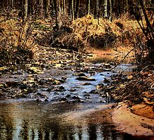 Unknown Creek - HDR by Sanguine