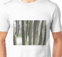 GIOCHIAMO A NASCONDINO SULLE RIVE DEL PO - ITALIA - EUROPA - MONDO Unisex T-Shirt