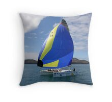 Throught the Passage Throw Pillow