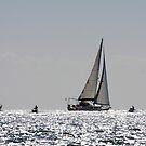 Sailing the Horizon by fotosports