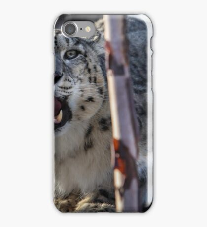 Snow Leopard (Panthera uncia) iPhone Case/Skin