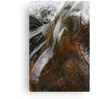 Moors water/ Paula Cattermole Canvas Print