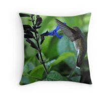 Hummingbird 7 Throw Pillow