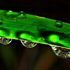 Drops uplight. by Victor Pugatschew