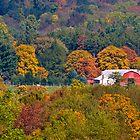 Rural Ohio Farm in Fall by Tony  Bazidlo