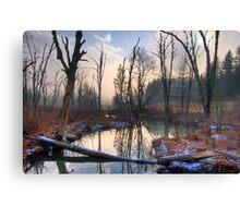 Mountain Bog Canvas Print