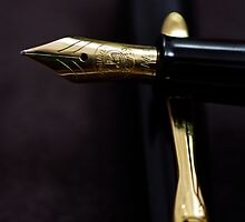Pelikan by Norman Repacholi