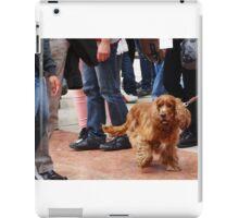Dog on crowded street iPad Case/Skin