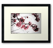 Stormy Blossoms Framed Print
