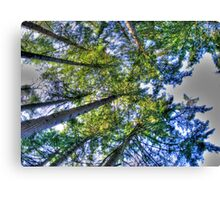 overheads Canvas Print