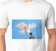 Coming in for a Landing Unisex T-Shirt