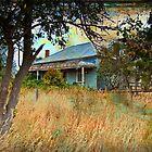 Old Farmhouse by Jurgen  Schulz