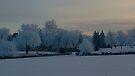 Winter Fantasy by Leanna Lomanski