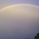 Rainbow  by Highlyamused