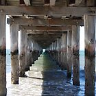 Under The Board Walk by for the love photography