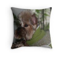 Keeping Warm Throw Pillow