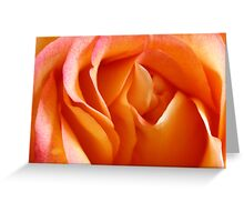 Peach Sherbet Greeting Card