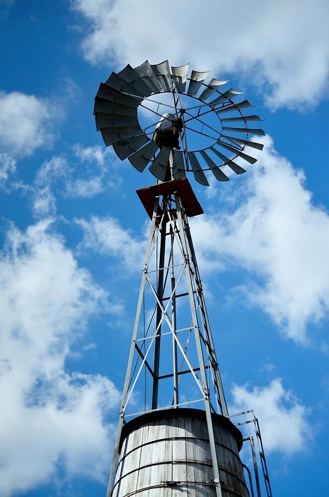 Wind Power by Linda Yates
