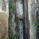 Lamu ancient Isle of secrets.. by jemmanyagah