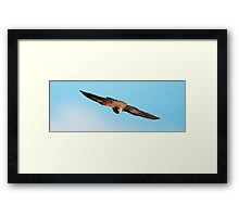 I Am Coming Fast Framed Print