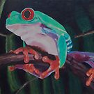 Red-eyed Australian Tree Frog  by Pam Wilkie