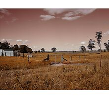 Fields Of Rust Photographic Print