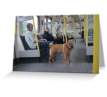 Look whos guarding the compartment? Greeting Card