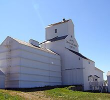 Inglis Grain Elevators by Cheryl Dunning