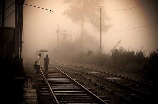 Train tracks by Ervin Bartis
