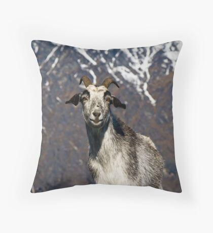 New Zealand Goat Throw Pillow