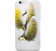 Willow buds iPhone Case/Skin