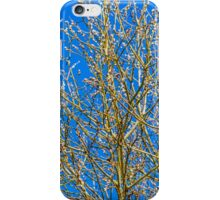Willow buds - Easter Time iPhone Case/Skin