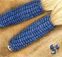 Blue Corn - Watercolor Pencil Drawing by M Rogers