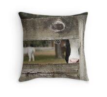 Cow at Farm Throw Pillow