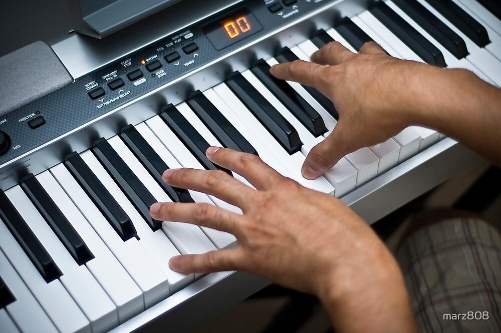 Keyboardist by marz808